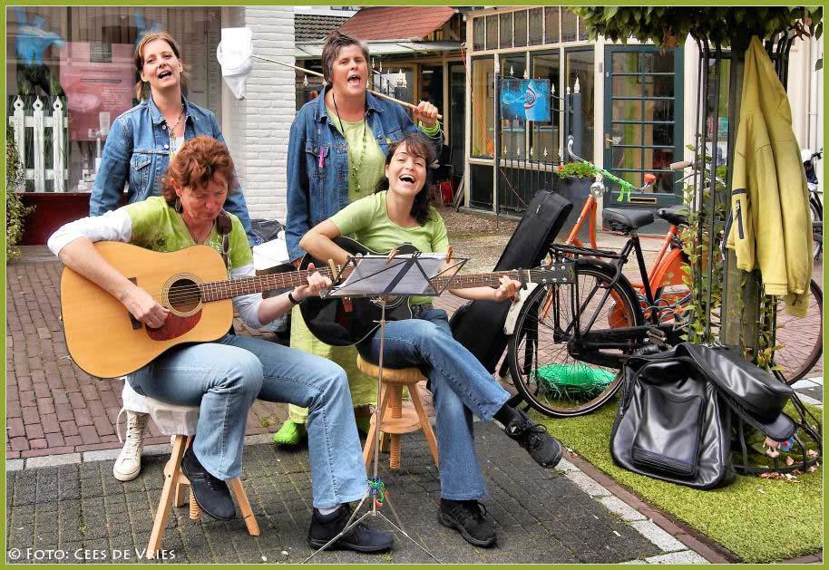 Cultureel Festival Baarn